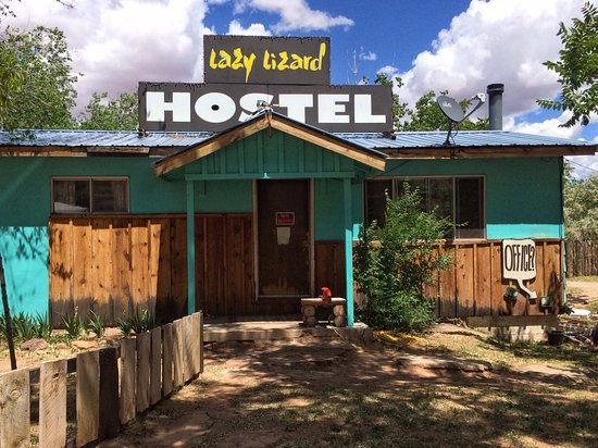 Lazy Lizard International Hostel-billede
