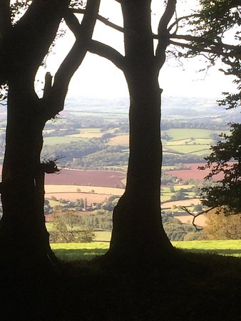 Bishops Lydeard, UK: Views from Lydeard Hill