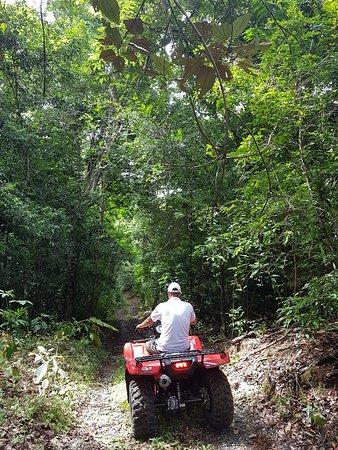 Бока-Чика, Панама: Into dense rainforest