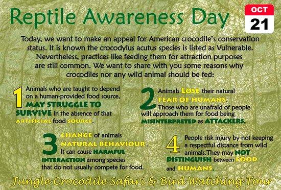 Tarcoles, Costa Rica: Reptile Awareness Day