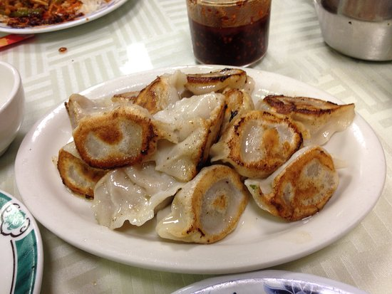 Chamblee, GA: Lamb Steamed Dumplings Yum!!!