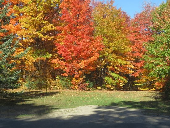 Port Carling, Canada: Incredible colours