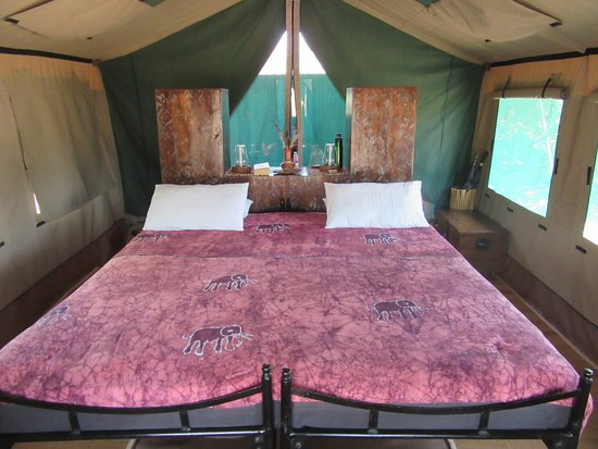 Ruaha National Park, Tanzania: Bed inside tent