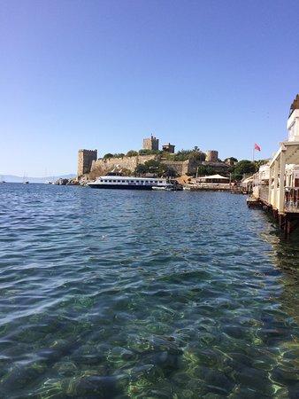 Blanca Restaurant: Man sidder helt ude i vandet på platformen og kan se fiskene svømme omkring
