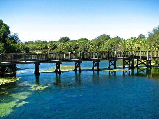 Palm Harbor, Floryda: Bridge