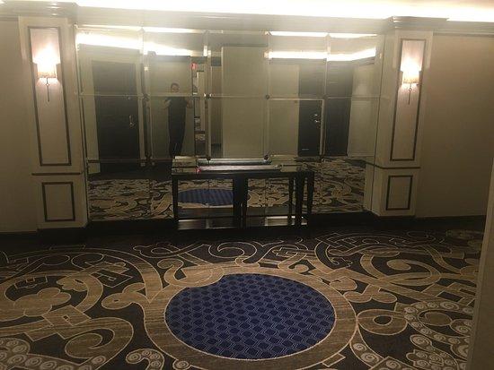 Adolphus Hotel: photo1.jpg