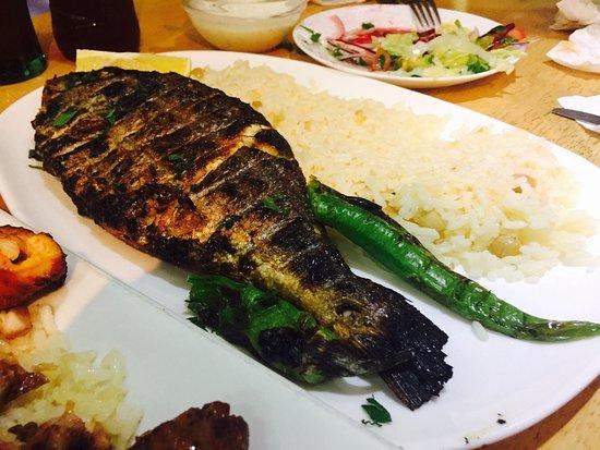 Anatolia mediterranean restaurant 277 high road leyton for Anatolia mediterranean cuisine