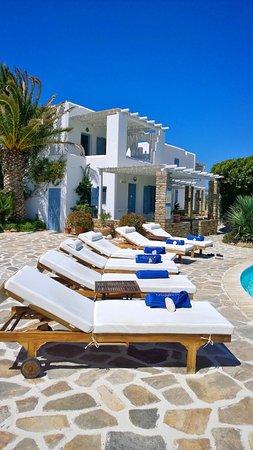 Stelida, Grecia: Piscina con lettini a disposizione degli ospiti