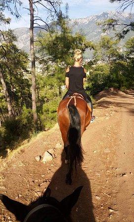 Trojan Horse Riding