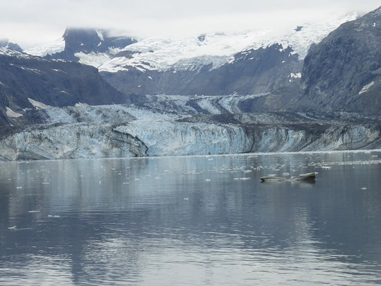 Gustavus, AK: Glacier seen from boat