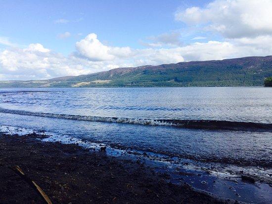 Loch Ness: Urqhart bay woods