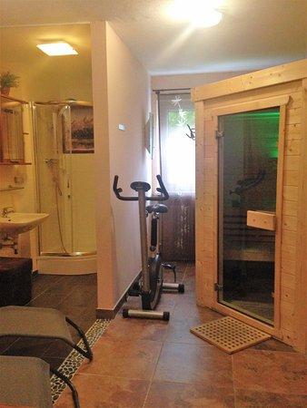 Pension Elan: Sauna