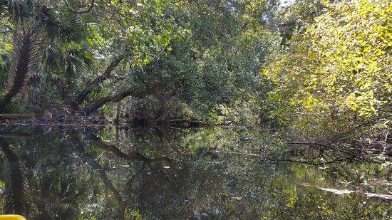 Wekiwa Springs State Park: 20161019_120712_large.jpg