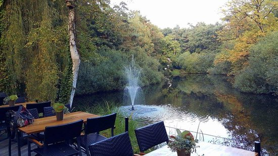 North Brabant Province, Paesi Bassi: 14714899_1089727437747863_7908939041493518951_o_large.jpg