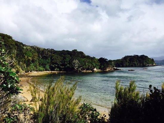 Stewart Island-bild