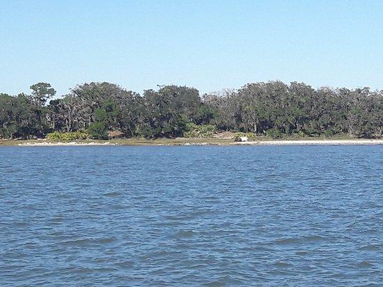 Fernandina Beach, FL: 20161022_152517_large.jpg