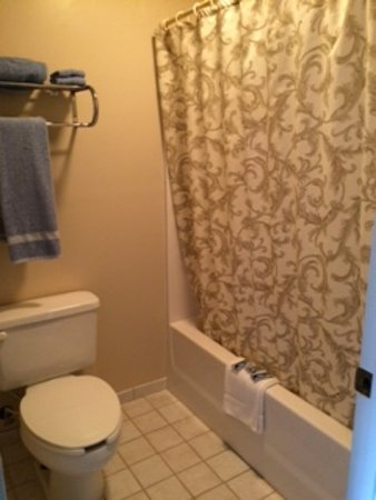 Sandy Hook, Кентукки: A clean bathroom is extremely important & we liked the non-generic fluffy towels & shower curtai