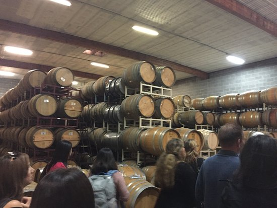 Napa Valley Wine Country Tours: photo3.jpg