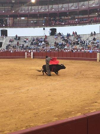Province of Malaga, Spania: photo0.jpg