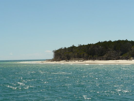 Hervey Bay, Australia: On the Whalesong Cruise Boat, we docked right in front of Fraser Island for lunch. Beautiful!