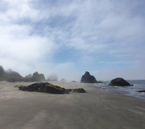 Harris Beach State Park: Harris Beach fog