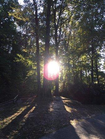 Gainesville, Géorgie : photo4.jpg