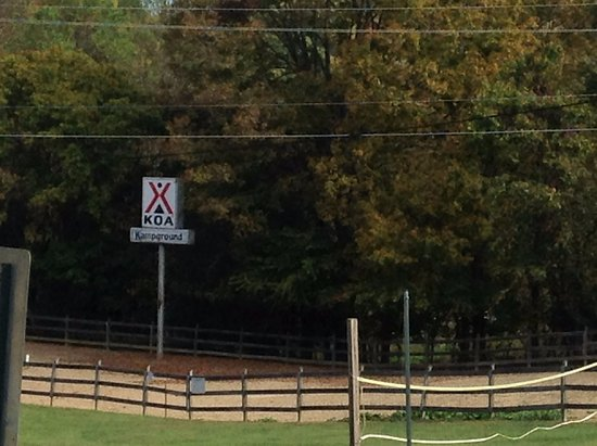 "Blountville, TN: KOA Campground - Wake up to the ""Donkey"" Alarm"
