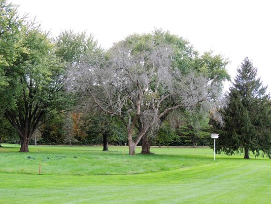Senica's Deer Park Golf Club