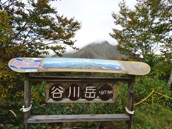 Zdjęcie Minakami-machi