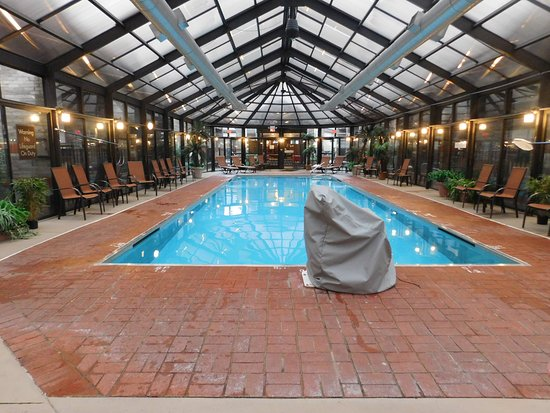 Photo6 Jpg Picture Of Comfort Inn Amp Suites Erie