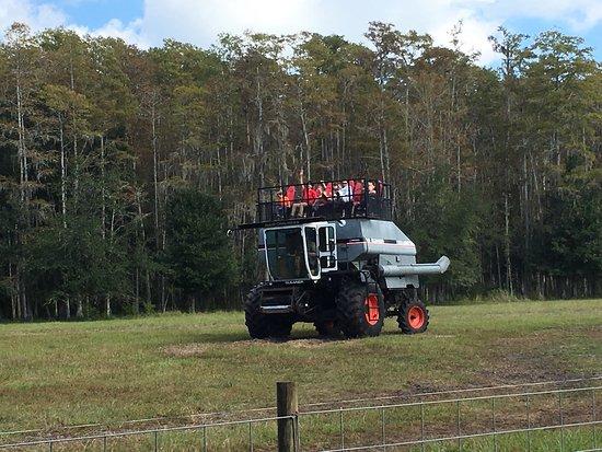 Partin Ranch Corn Maze