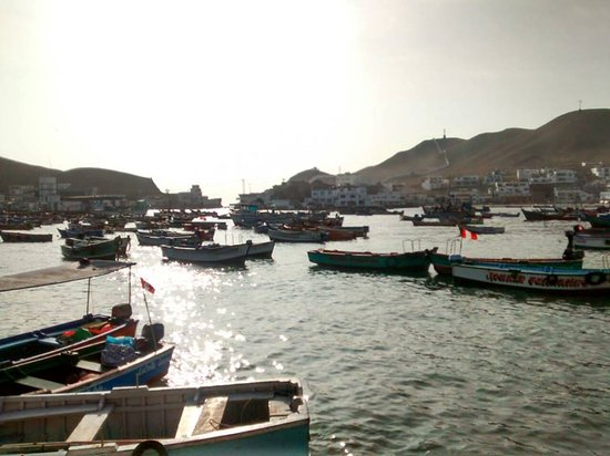 Pucusana District : lindos botes de paseo