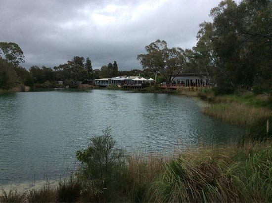 Nuriootpa, Australia: photo3.jpg