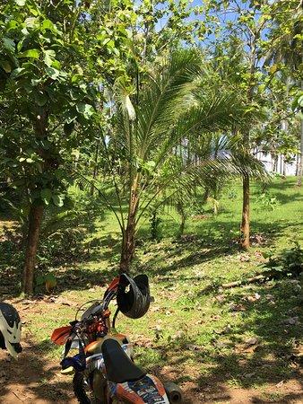 Mengwi, Indonésia: photo4.jpg