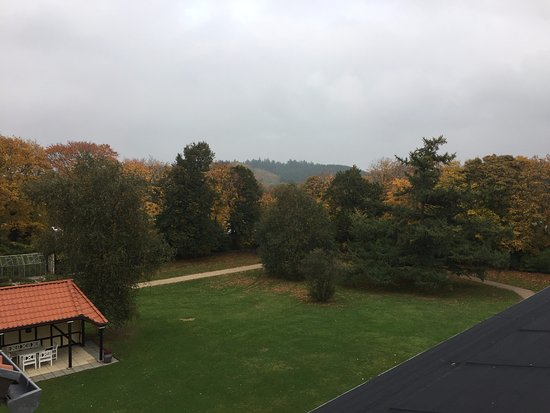 Gl. Skovridergaard, BW Premier: View from our rooms.