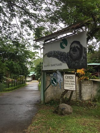 Sloth Sanctuary of Costa Rica (Aviarios del Caribe): Our awesome visit to the sloth sanctuary! Loved the Insider's Tour!