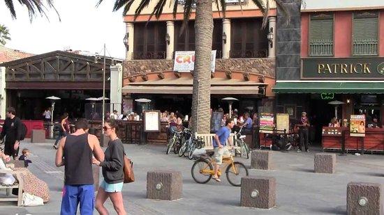 Great Happy Hour Specials Review Of Baja Sharkeez Hermosa Beach Ca Tripadvisor