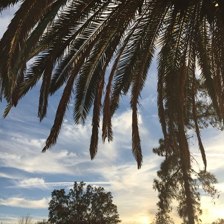 Newhall, Kalifornia: photo8.jpg