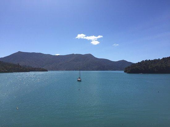 Te Mahia, Nueva Zelanda: photo2.jpg