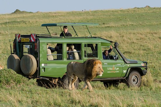 Fourways, แอฟริกาใต้: Masai Mara Photo Safari