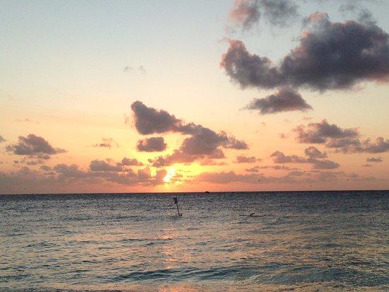 Foto de Lady Elliot Island