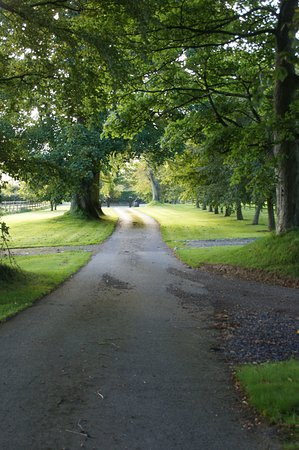 Slane, Ireland: The entrance drive