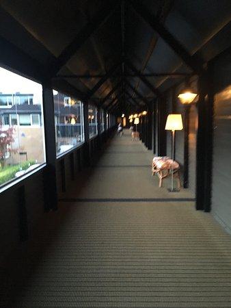 Gilze, Países Bajos: photo0.jpg