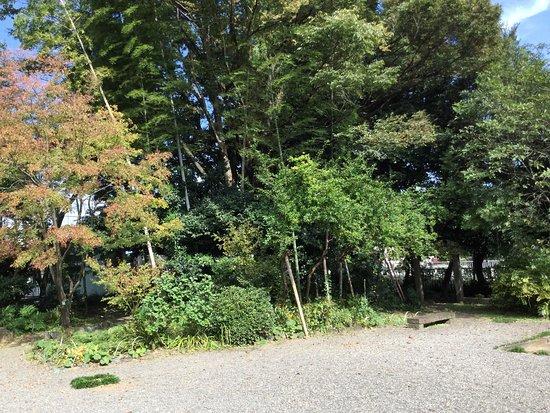 Ebina, Japón: photo4.jpg