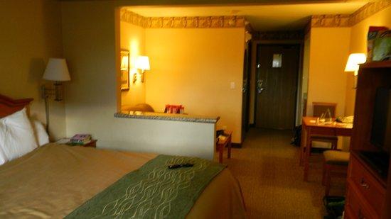 Comfort Inn South: 317 mini suite