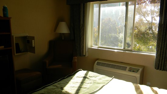 Comfort Inn South: mid day sunshine room 317