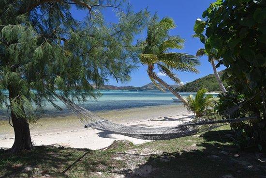 Yasawa Adaları Resmi