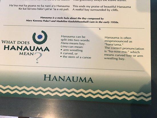 Hanauma Bay Nature Preserve: photo7.jpg