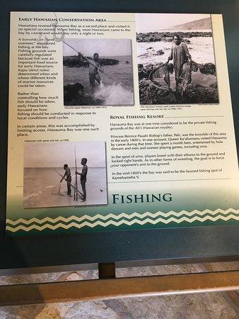 Hanauma Bay Nature Preserve: photo8.jpg