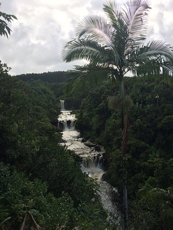 Hakalau, HI: Couldn't imagine a more breathtaking setting and fun day. SOARING THRU The black rock and water